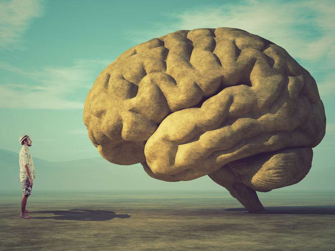 Exploring the unique genes behind our large brains