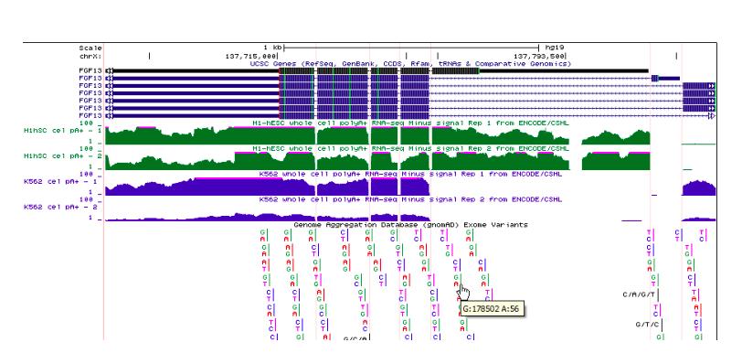 Genome Browser Workshops: Various Locations | Genomics Institute
