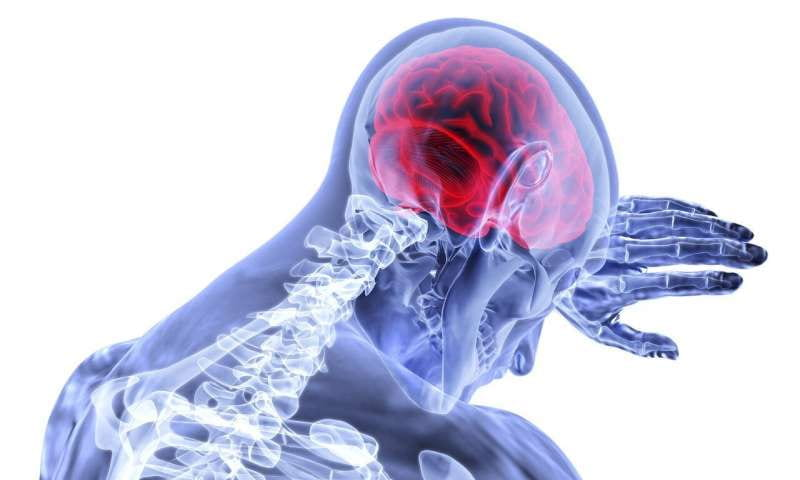 Study pinpoints cell types affected in brains of multiple sclerosis patients