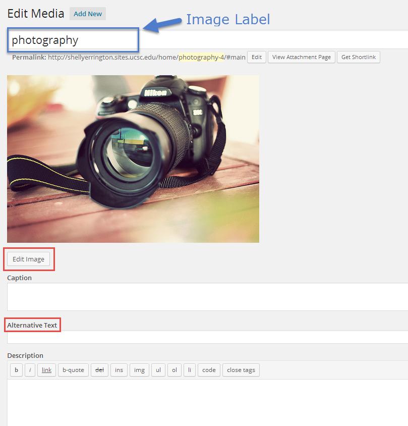 edit media screenshot