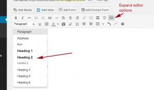 Screenshot of WordPress editor with headings menu open