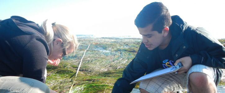 At the Intertidal Zone Collecting Data