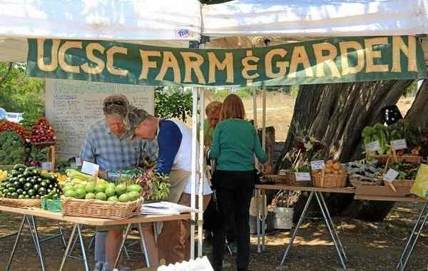 Photo pf Farm Stand