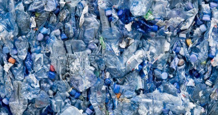 Photo of blue plastic bottles