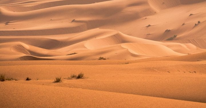 A photo of sand dunes in the desert