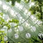 Eco-modern academy image