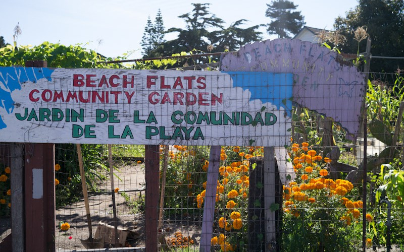 sc_beachflats1-800x500