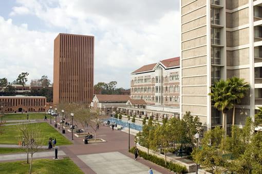 campus_levy