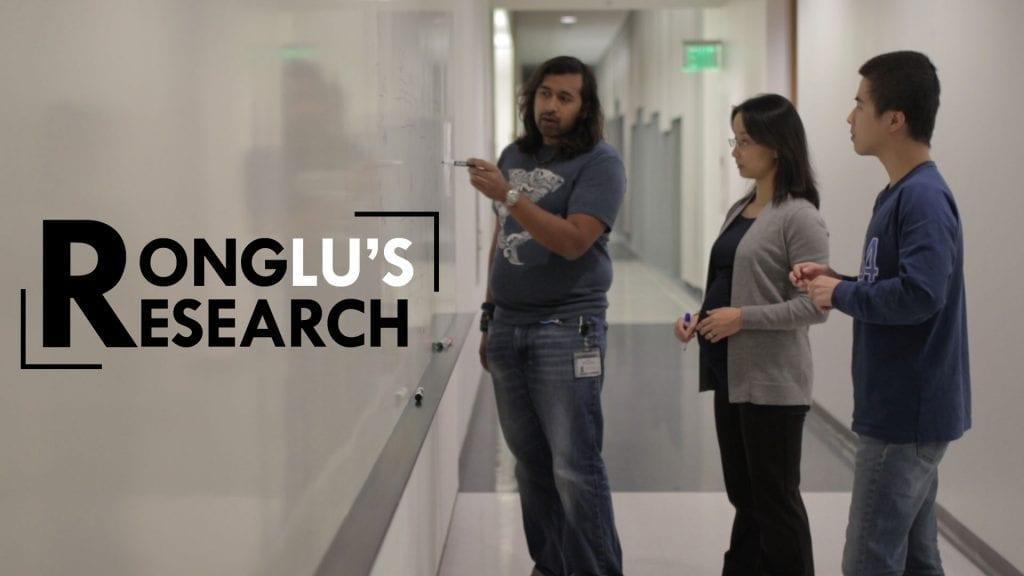 USC scientist Rong Lu studies how stem cells work together