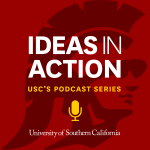 Ideas In Action Podcast Art