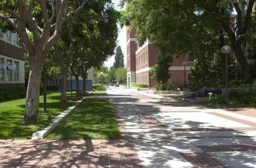 Walkway, Bloom Walk - walkway - exterior
