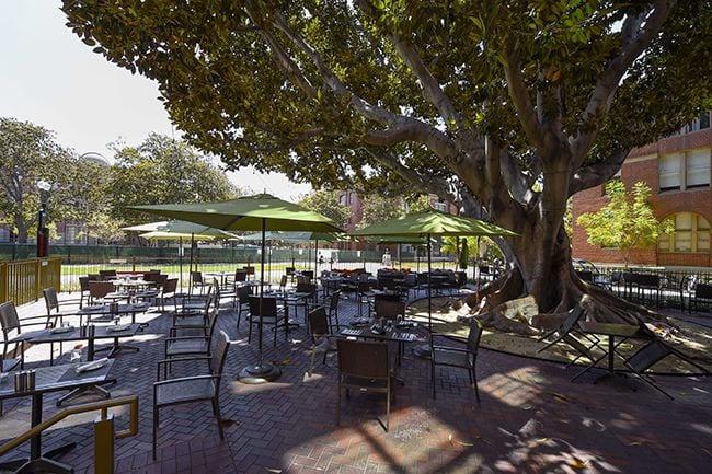 Restaurant, Moreton Fig Patio SE