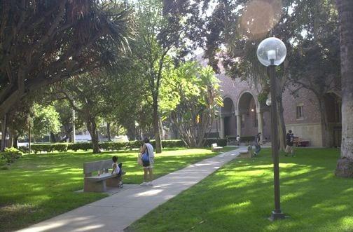 Grassy Area, Associates Park (PE building in background) - grassy area - exterior