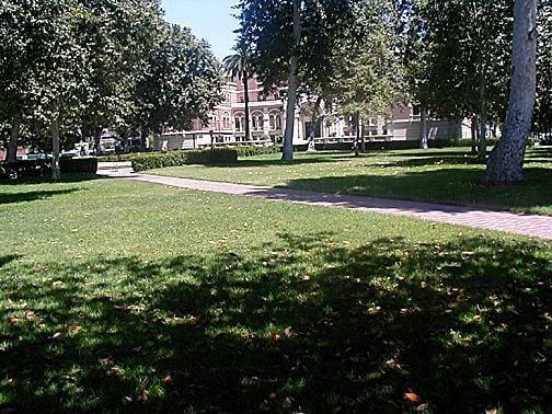 Park, Alumni Park exterior Grassy area - Park