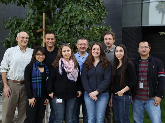 Segil Lab 2013