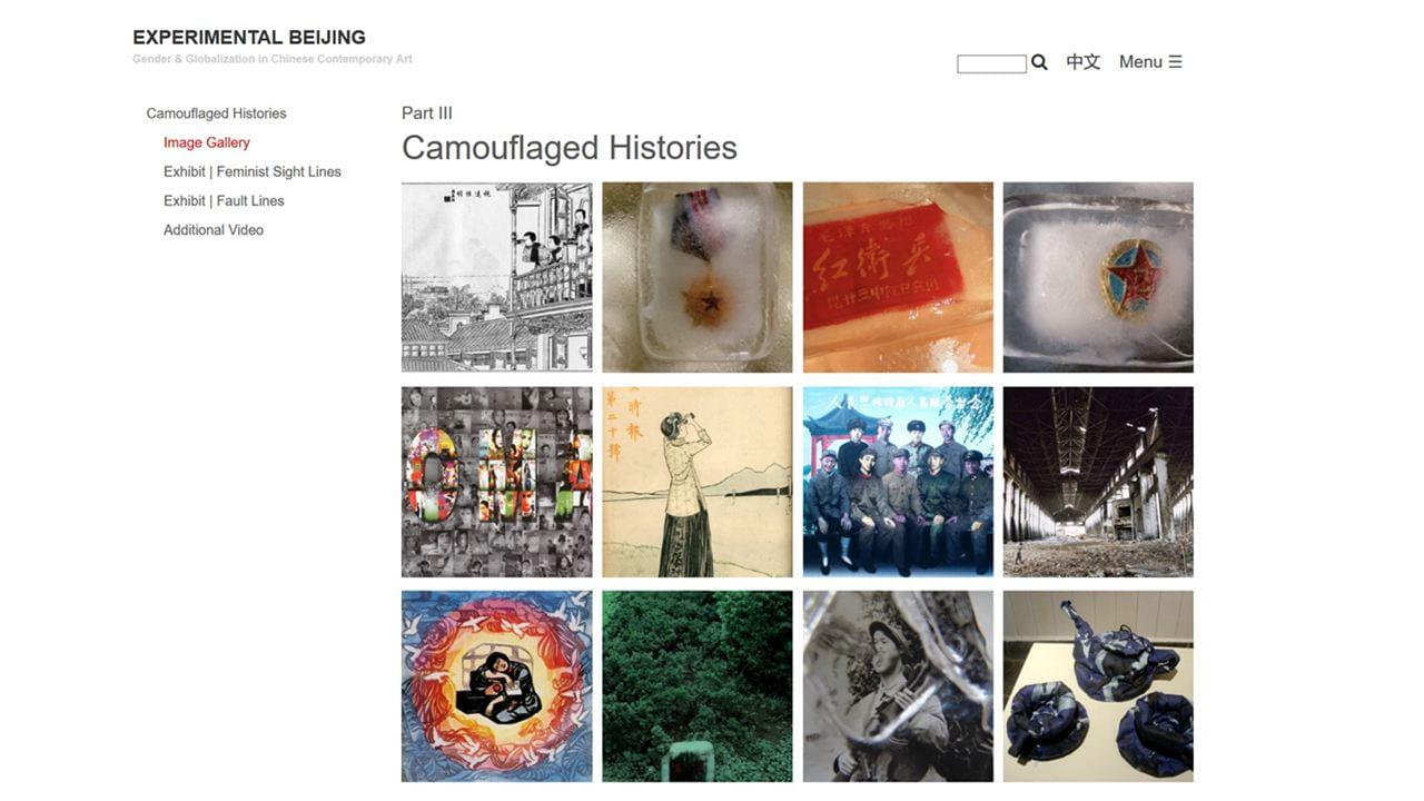 screenshot of online exhibit