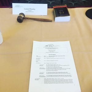 Image of a gavel and agenda for a board meeting.