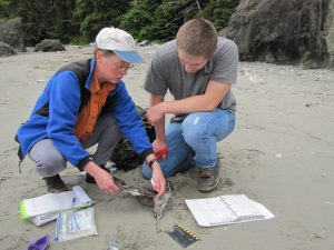 Julia and Nick examine the find of the day. Hint: a tubenose, common this time of year.