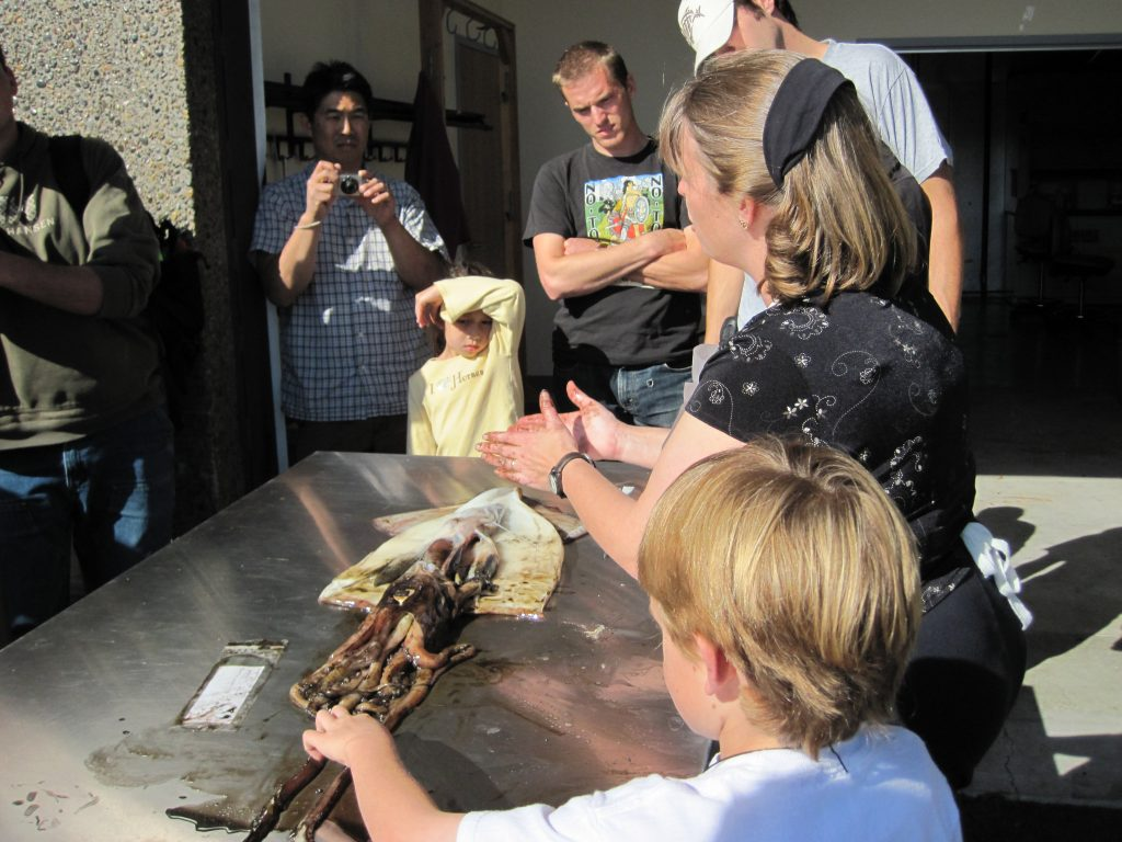 Selina Heppell explains her dissection of a Humboldt squid to a group of students on the coast.