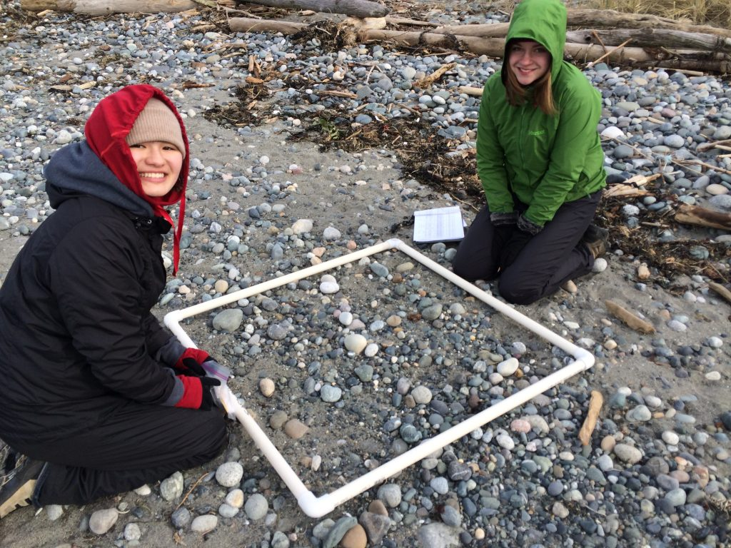 Interns Kaili and Abby survey for small marine debris at Discovery Park