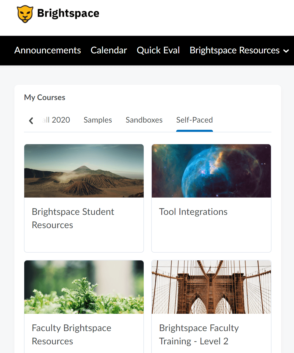 "Brightspace home page showing ""my courses"" and ""self-paced"" options"