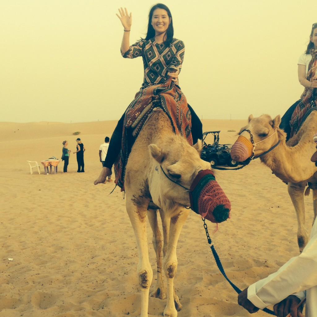 Camel riding in Abu Dhabi, UAE