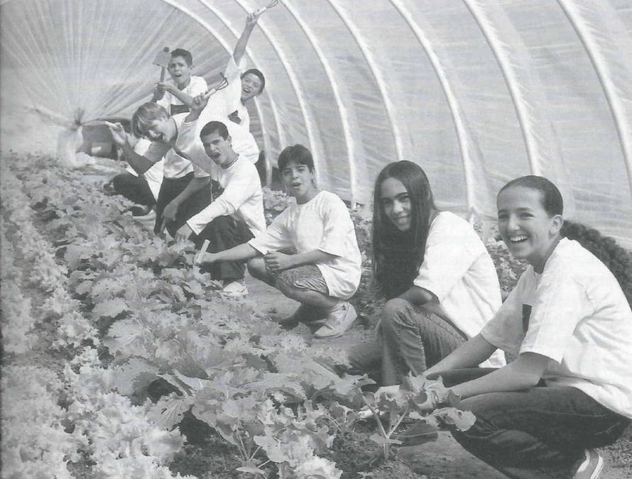 Philanthropy In Brazil