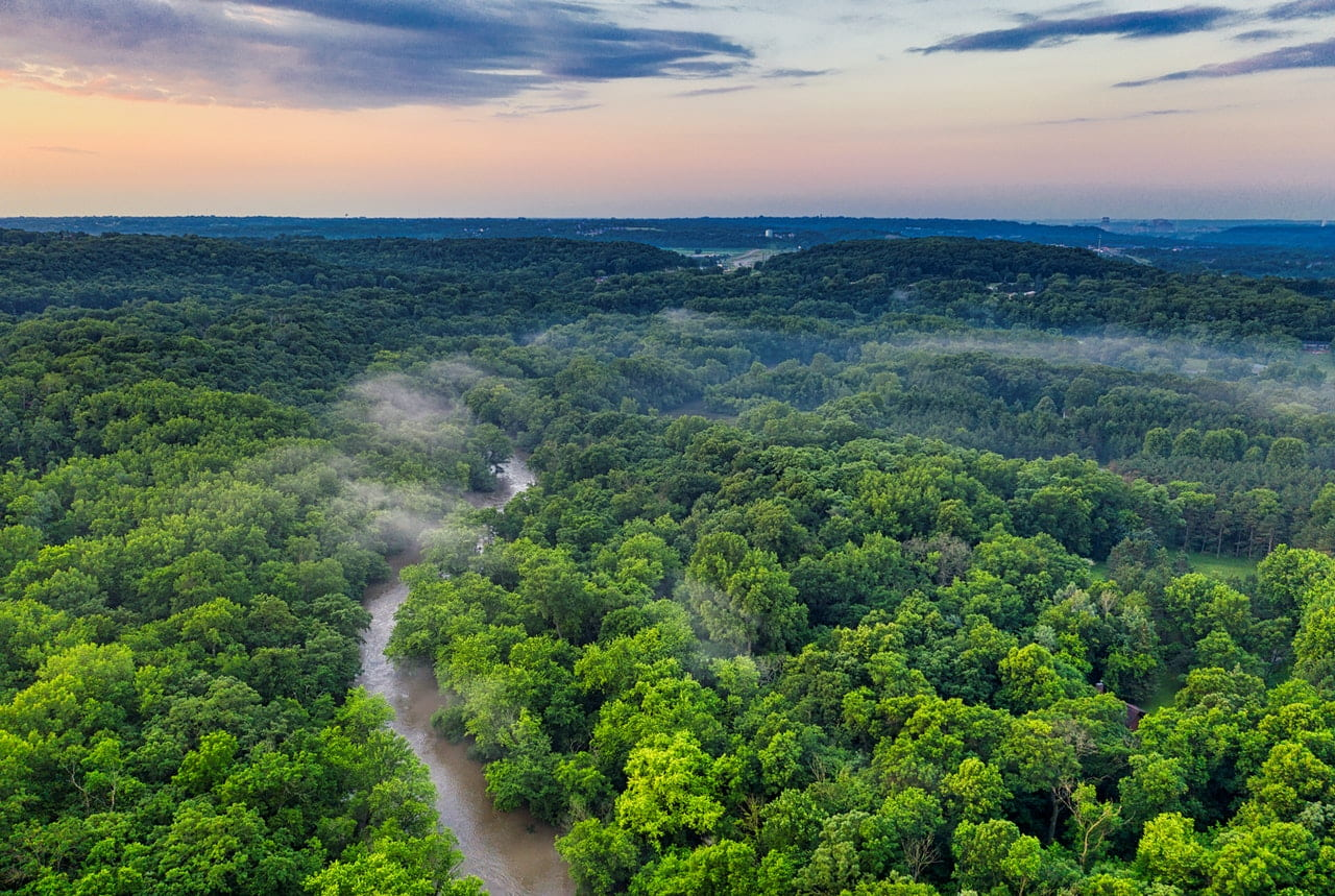 aerial view of the Amazon rain forest