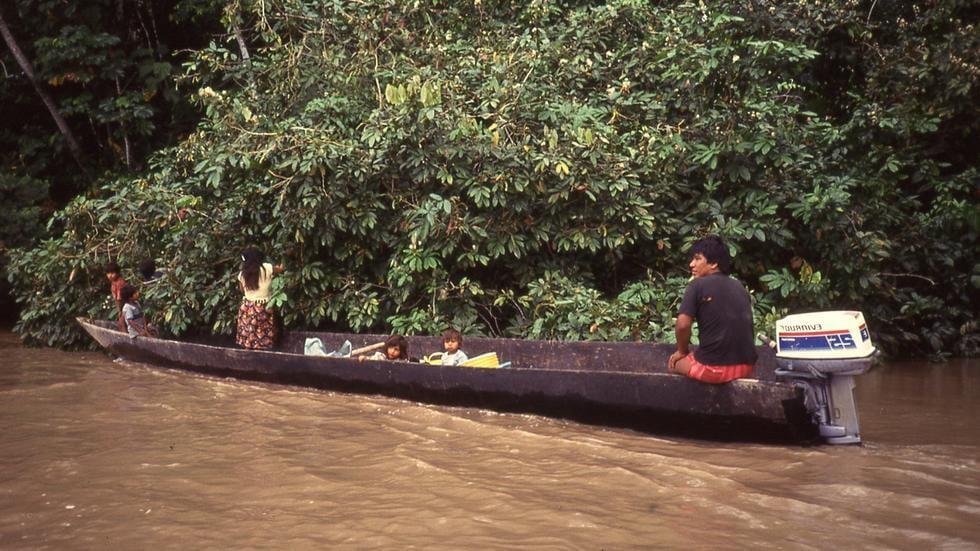Saving Latin America's Forests