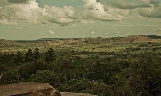 Bolivia's Amazon