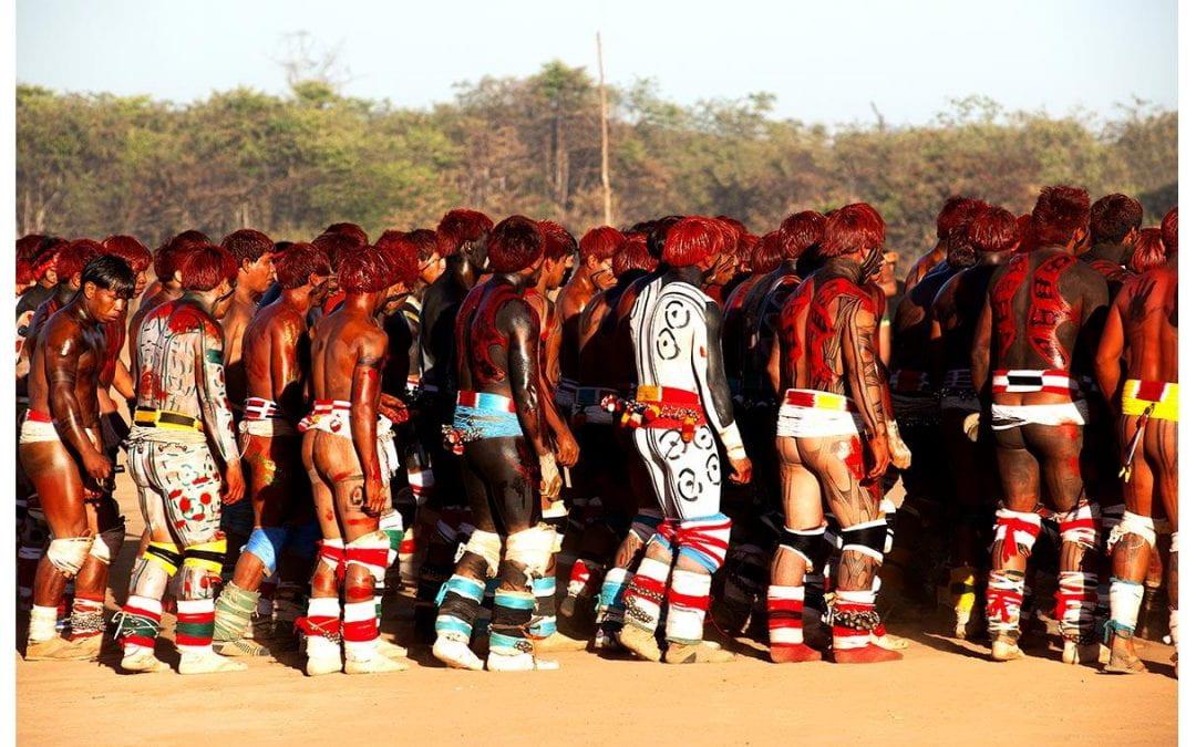 Amazônia Redux