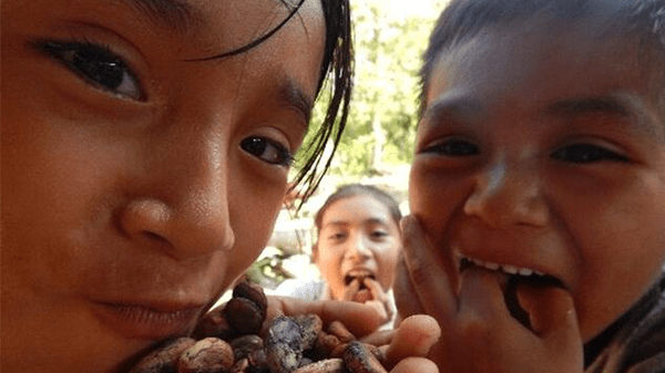 A Culture of Cacao and Chocolate