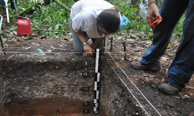 Archaeology in Amazonia