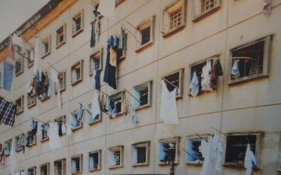 Pandemic in the Brazilian Prison System