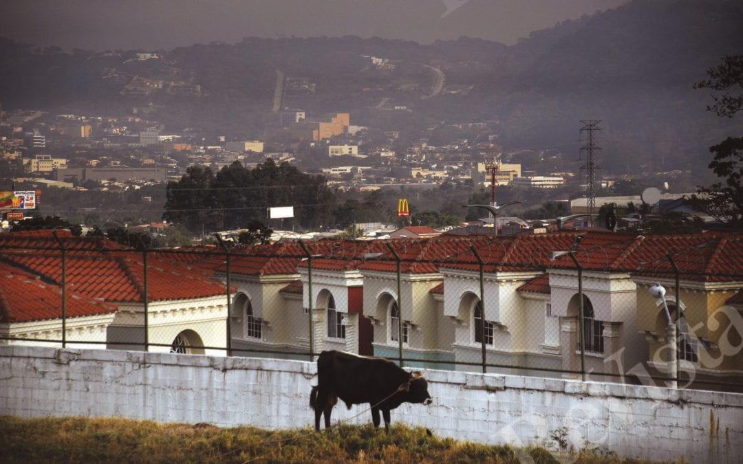 El Salvador's Future