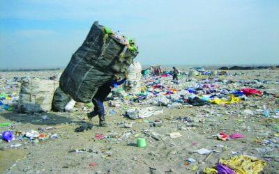 Living off Trash in Latin America