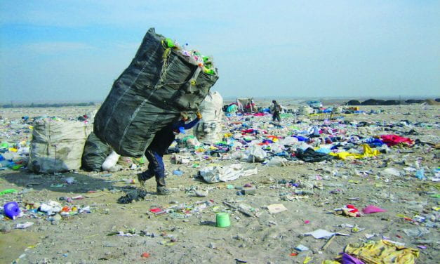 Living off Trash in Latin America