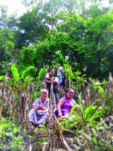 Four women in a field, aiding in identifying exhumation spots.