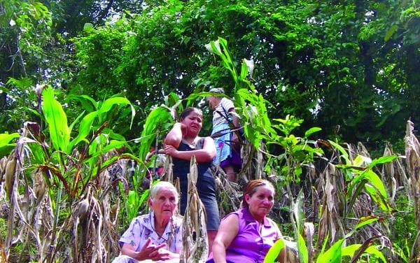 A Search for Justice in El Salvador: One Legacy of Ignacio Martín-Baró