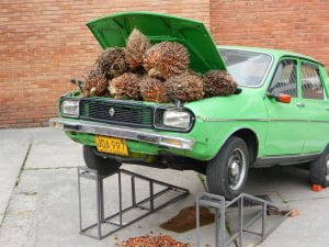 A green midsized Renault sedan sits on a ramp lifting the car´s open hood and revealing an engine stuffed with palm seeds
