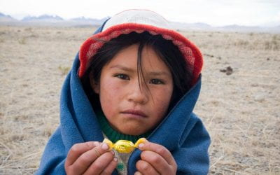 We Want Public Education! Education on the Agenda of Bolivian Indigenous Peoples Movement