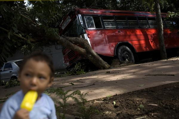 Latin American Organized Crime's New Business Model