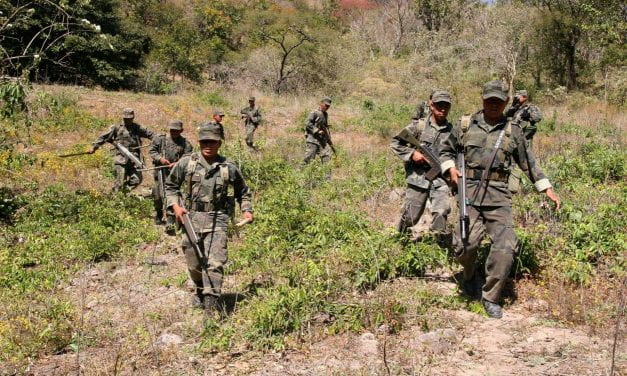 Fighting for Security in Mexico