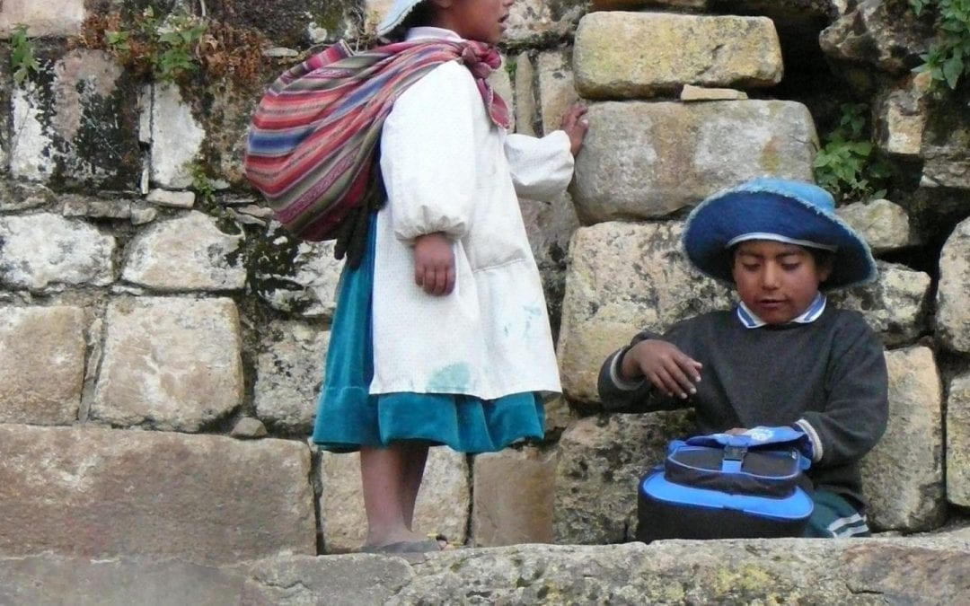 The New Bolivian Education Law