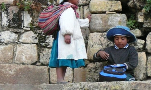 The New Bolivian Education Law: Among the Guarayo