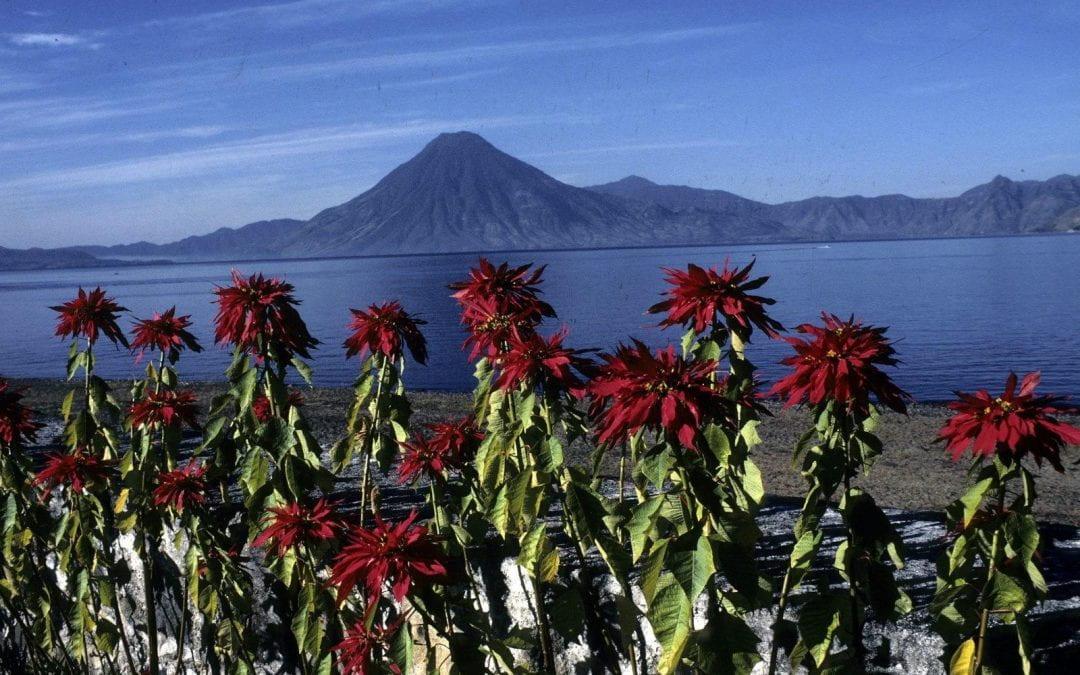 First Take: Guatemala, Guatebuena, Guatemaya