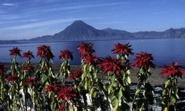 Bilingual: First Take: Guatemala, Guatebuena, Guatemaya