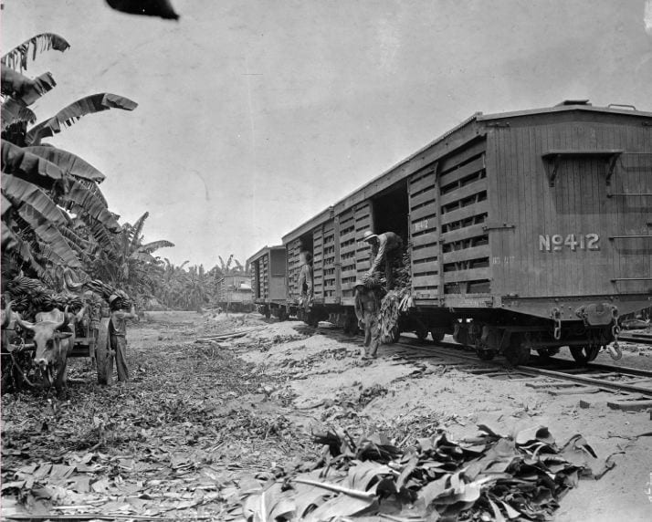 Photo of two men moving fruit from an ox-drawn cart to a railroad cargo car in Columbia, April 12, 1927