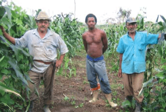 Land Reform and Community Building