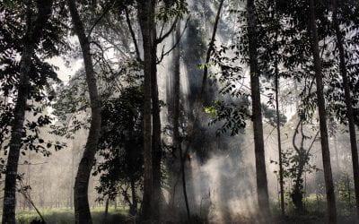 Collective Isolation in the Sibundoy Valley, Putumayo-Colombia-2020